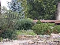 Dvůr + zahrada