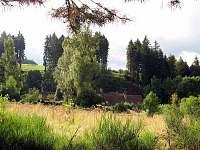 Les - chalupa k pronájmu Mezilesí