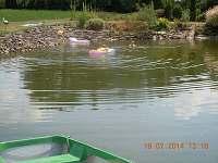 koupání v rybníku