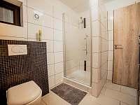 Apart. 1 - dolní koupelna - Kamenice nad Lipou - Březí