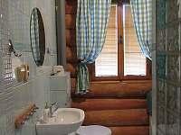 koupelna přízemí - Polesí