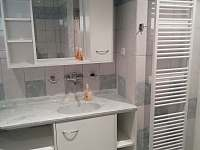 Koupelna - apartmán k pronajmutí Nový Rychnov