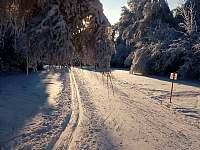 Upravené běžecké trasy ve vzdálenosti 4 km - Nový Rychnov