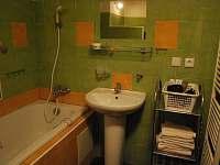 koupelna společná s toaletou - Česká Rybná