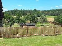 Zahrada / kamerunksé ovce - chalupa k pronajmutí Kejžlice