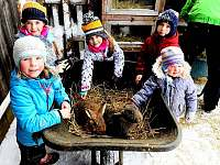 Farma pod kopcem - chalupa - 35 Rychnov