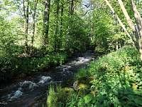 říčka Fryšávka - pstruhový potok