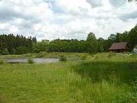 Nádherná příroda kolem srubu - rybník, les a spousta zeleně.