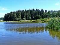 Pohled z mola u rybníku na okolní les.