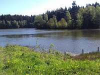 Nový vepřovský rybník - možnost koupání -