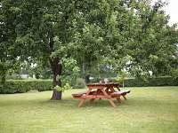 zahrada s jabloní - chalupa ubytování Hlohov