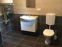 Koupelna s toaletou - chata ubytování Fryšava pod Žákovou horou