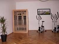 Apartmán Hartvíkovice - k pronájmu