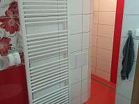 koupelna s WC - apartmán k pronajmutí Nové Dvory