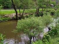 Řeka Oslava 30m od chaty - k pronajmutí Kamenná