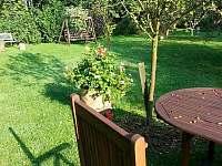 zahrada - pronájem apartmánu Krátká