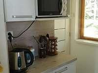 Chata Kateřina - kuchyň (mikrovlnka, rychlovarná konvice) - k pronajmutí Trhová Kamenice