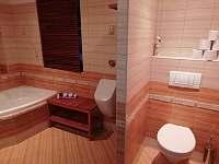koupelna - chalupa k pronájmu Uhřínov