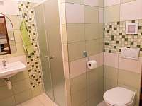koupelna pokoj č.3 - Vojnův Městec