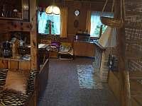 Společenská místnost s krbem a se schody do ložnic - chata k pronajmutí Škrdlovice - Velké Dářko