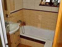 Koupelna - Mezilesí