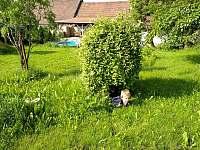 zahrada3 - Trebelovice