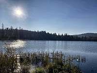 Velký pařezitý rybník - Řásná