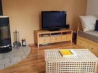 Obývací pokoj s krbovými kamny - chalupa k pronájmu Nové Město na Moravě - Olešná