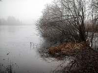 Lísek - Lhota - chata k pronájmu - 24