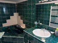 koupelna - pronájem chalupy Štěměchy