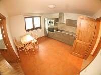 Apartmán v podkroví - k pronájmu Sklené
