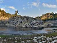borovice,vírská přehrada - Dalečín