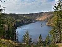Vírská přehrada,borovice