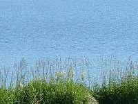 čápi na Hamru - Dobrá Voda