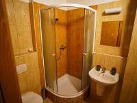 Koupelna pokoj č. 2 - ubytování Bílek