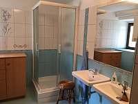 koupelna - apartmán k pronájmu Rohozná