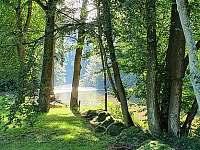 Prostor u řeky k rozjímání - chata k pronájmu Kralice nad Oslavou - Velké Pole