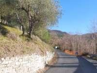 Cesta,ktera vede k nasemu domu