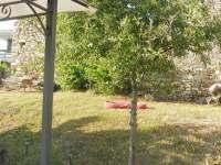 Zahrada - rekreační dům ubytování Toskánsko