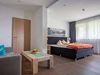 Apartmány Alpenlodge - penzion - 43 Leutasch in Tirol - Rakousko
