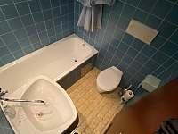 Apartmán č.6 Tauplitz - Rakousko - apartmán - 14