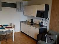 kuchyně - apartmán ubytování Bad Gastein - Rakouské Alpy