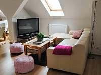 Holiday House - apartmán k pronajmutí - 20 Novosedly