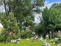 zahrada - chalupa k pronájmu Bochov