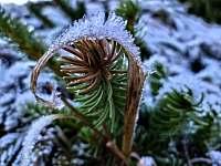 zima - chalupa k pronájmu Hřebečná