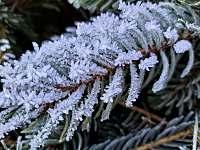 zima - pronájem chalupy Hřebečná