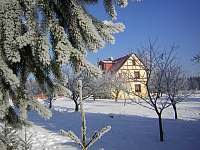 zahrada - Karlovy Vary - Kolová
