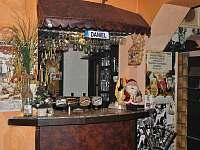 Šenk U Kovárny - penzion - 6 Mariánské Lázně