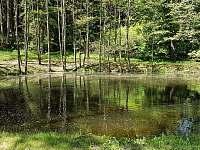 náš rybníček - Karlova Huť