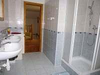 Koupelna - pronájem chalupy Netunice